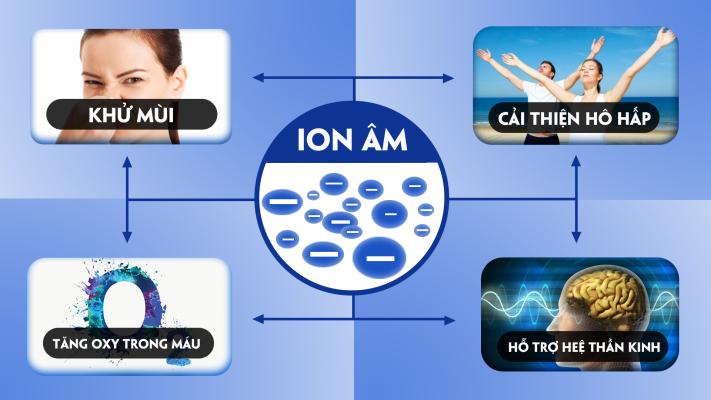 web ion 2(1)
